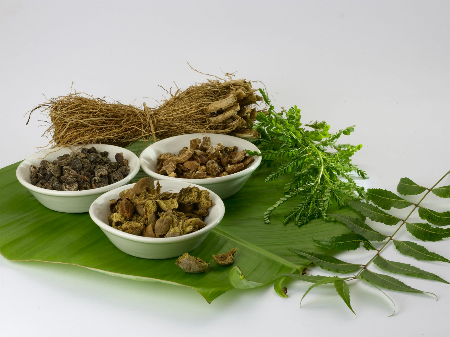 Benefits of Ayurvedic Treatment in Psoriasis